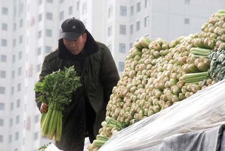 """组织调运6万吨蔬菜 确保市民""""菜篮子""""丰盈"""